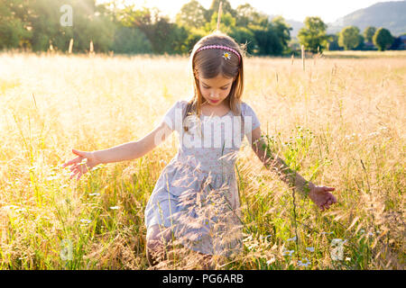 Young girl walking through field at summer evening - Stock Photo