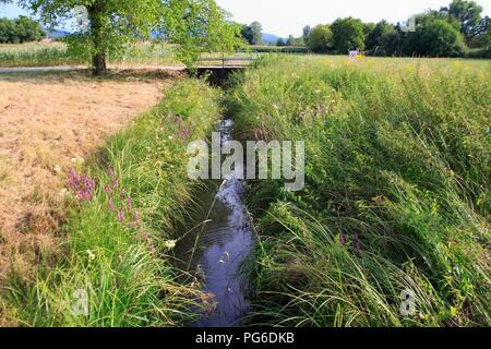 Ooser Landgraben, Fluß durch Sandweier einem Ortsteil von Baden-Baden - Stock Photo