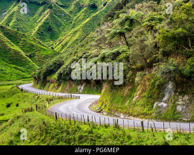 New Zealand, North Island, Manawatu-Wanganui Region, Forgotten World Highway - Stock Photo