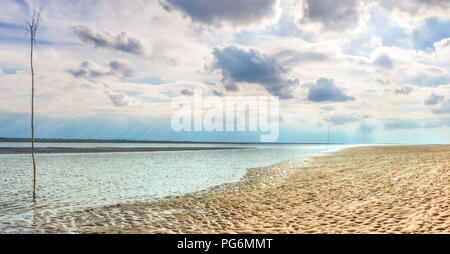 Low tide at the Wadden Sea in North Germany, with a row of trees to measure the water level for crossing the ocean to the East Frisian Islands - Stock Photo