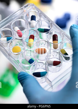 Pharmaceutical Research, Scientist holding a multi well plate containing drugs to be tested in the laboratory - Stock Photo