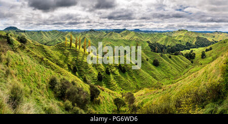 New Zealand, North Island, Taranaki, landscape seen from Forgotten World Highway - Stock Photo