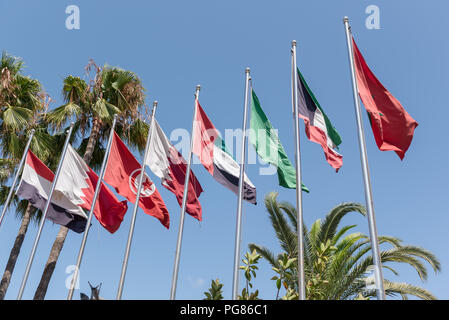 Flags of MENA (Middle East and North Africa on a series of flagpoles including national flags of Morocco, Kuwait, Saudi Arabia, United Arab Emirates,  - Stock Photo