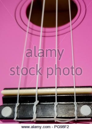 This pink ukulele has it's strings in a close up. - Stock Photo