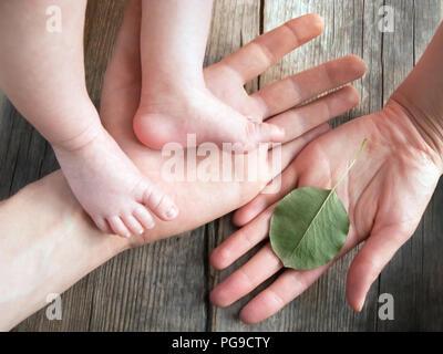 Parent's hands holding newborn legs. Baby's feet in parent's hands. Daddy holding his newborn baby's feet. Father's hand holding baby's legs. Human ha - Stock Photo
