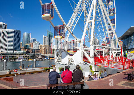 Giant ferris wheel in Darling Harbour,Sydney city centre,Australia - Stock Photo