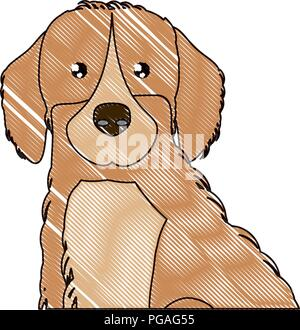 cute golden retriever icon over white background, vector illustration - Stock Photo