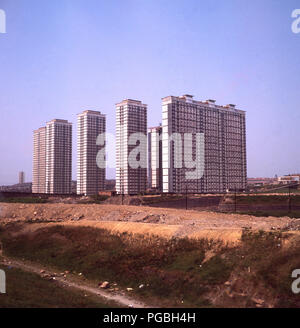 Late 1960s, a view of the recently constructed Red Road flats, the infamous modern high-rise housing development in Glasgow, Scotland. The 28 -and 31-storey tower blocks were designed by Sam Bunton and built to house as many as 4,700 people from the inner-city slums. They were later demolished, as they had become far worse, ravaged by crime, anti-social behaviour and built with the deadly asbestos. Their construction was a giant failure, both of the city's post-war housing renewal policy and of high-rise tower blocks as a sale and pleasant place for people to live. - Stock Photo