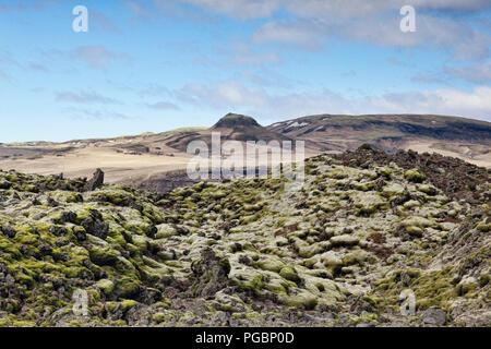 Moss covered ancient lava field at Skaftareldahraun, South Iceland - Stock Photo