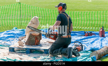 Strathaven, Scotland, UK. 25th August, 2018. James Elliott carving an owl using a chainsaw at the Strathaven Balloon Festival celebrating its 20th Anniversary and is held in the award winning John Hastie Park. Credit: Skully/Alamy Live News - Stock Photo