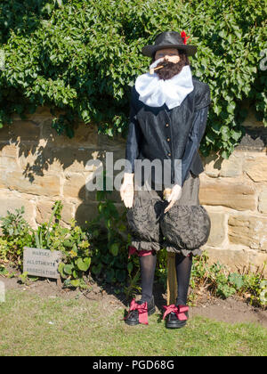 Marske North Yorkshire August 25th/ Like many Yorkshire villages Marske by the Sea has a weeklong Scarecrow Festival which started today 25th August,  many different organisations and social groups have made scarecrows an erected them around the village.  Parents and children can get a trail map to follow and view all the exhibits.  There is a prize draw at the end of the week.  Marske Allotments Association Sir Walter Raleigh Credit: Peter Jordan NE/Alamy Live News - Stock Photo