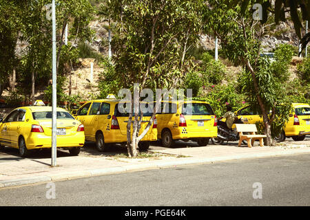 Line of yellow taxi cabs on a sunny day. Many yellow cars waiting at a taxi rank among the trees - Stock Photo