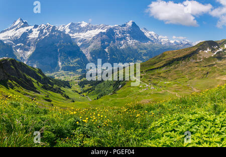 View from First to Grindelwald and the Schrekhorn and Eiger mountains in the Jungfrau region of the Bernese Oberland Alps, Switzerland - Stock Photo