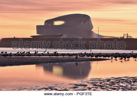 Modern cruise terminal building at dusk, waterbirds resting on the shore of Matosinhos beach in Porto Western Portugal Europe. - Stock Photo