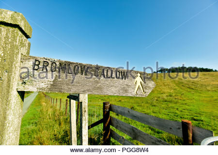 A wooden footpath sign pointing towards the tree topped hill Bromlow Callow in Shropshire, England, UK - Stock Photo