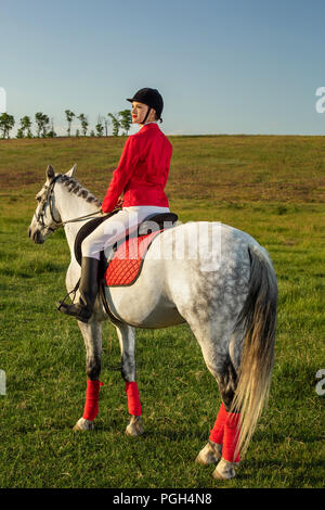 Young woman rider, wearing red redingote and white breeches, with her horse in evening sunset light. Outdoor photography in lifestyle mood - Stock Photo