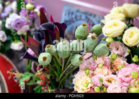 Bouquet of green opium poppy heads, capsules, seed bud and tropical leaves on a background of different flowers in a flower shop - Stock Photo