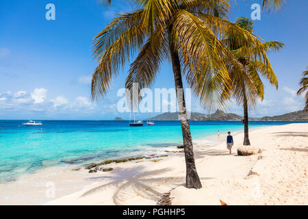 Idyllic tropical beach with white sand, palm trees and turquoise Caribbean sea water on Mayreau island in St Vincent and the Grenadines - Stock Photo