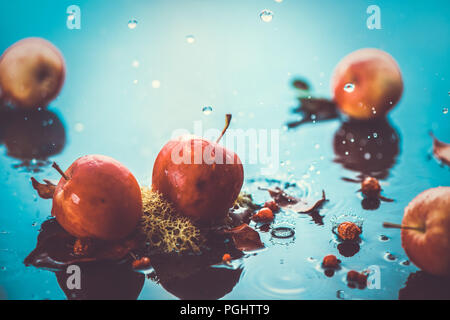 Autumn apples under rain still life. Fall harvest header with water drops and copy space. Red small ranet apples and fallen leaves. Cross process effect - Stock Photo