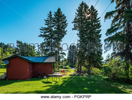 Morning sun filters through evergreen trees by a cabin located a short walk from Lake Superior, near Grand Marais, Minnesota, USA. - Stock Photo