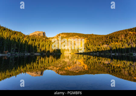 Aspen trees in fall colors at Bear Lake in the Rocky Mountain National Park, Colorado, USA - Stock Photo