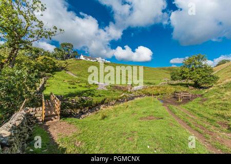 North Pennines AONB Landscape, Birch Bush Farm, Ettersgill, Teesdale, UK in late summer sunshine - Stock Photo