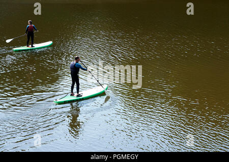 Paddle Boarders on the River Teifi at Cardigan - Stock Photo
