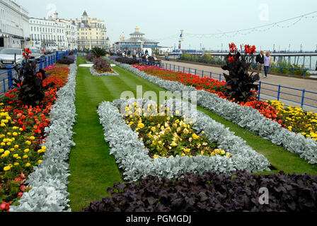 Colourful flower beds on the seafront, Eastbourne, East Sussex, England - Stock Photo