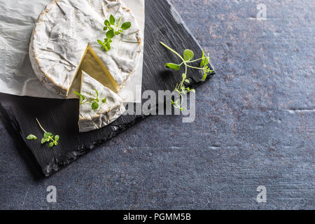 Cheese camambert from oregano herbs on slate board. - Stock Photo