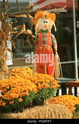 Sunshine Natural Food Market