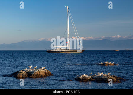 Luxury Sailboat anchored off Cattle Point in Uplands Park, Oak Bay near Victoria, Vancouver Island, British Columbia, Canada - Stock Photo