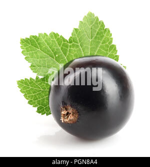 one black currant with leaf isolated on white background - Stock Photo