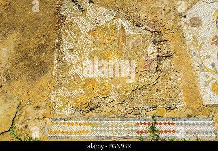 CARTHAGE, TUNISIA - AUGUST 31, 2015: The fragment of ancient mosaic with duck and colorful flowers on the floor in archaeological site of Roman villas - Stock Photo