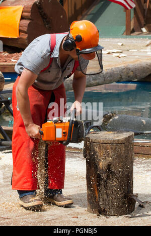 Man demonstrating vertical chainsaw cut through log segment - Stock Photo