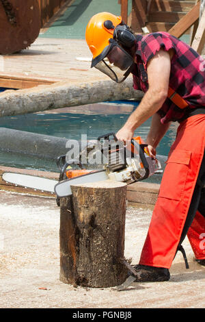 Lumbar jack demonstrating vertical chain saw cut through log segment - Stock Photo