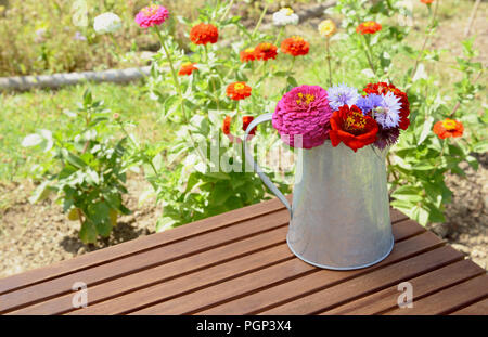 Arrangement of zinnias and cornflowers in a metal jug on a wooden garden table, outside by a bright flower bed - Stock Photo