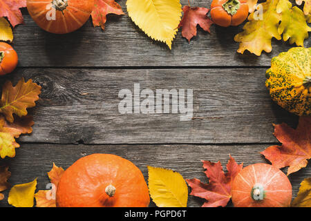 Autumn Background Fallen Maple Leaf Pumpkins Frame. Thanksgiving Day Background, Halloween Background, Fall concept. Copy Space For Text. - Stock Photo