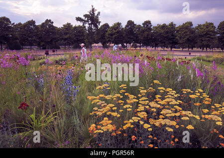 Colourful summer border planting by celebrated garden designer Piet Oudolf at the RHS Hampton Court Palace Flower Show, East Molesey, Surrey, UK. - Stock Photo