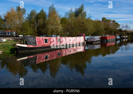 Canal boats moored on River Stort at Sawbridgeworth awaiting repair and refurbishment prior to naming and sale. - Stock Photo