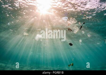 Underwater plastic pollution floating on the surface of the ocean in Egypt - Stock Photo