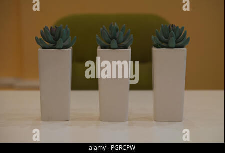 Three flowerbeds with plastic plants on white table in front of a chair - Stock Photo