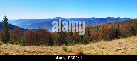 Panorama of hills of a smoky mountain range covered in red, orange and yellow deciduous forest and green pine trees under blue cloudless sky on a warm - Stock Photo
