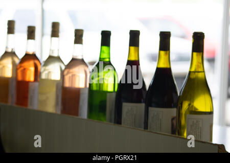 A row of colorful wine bottles back lit by natural white against a light background - Stock Photo