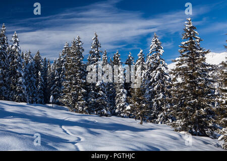 Winterlandschaft Gerlosplatte - Stock Photo