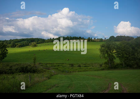 A hilly meadow with hay bales near Pine City, New York, July 2018. - Stock Photo