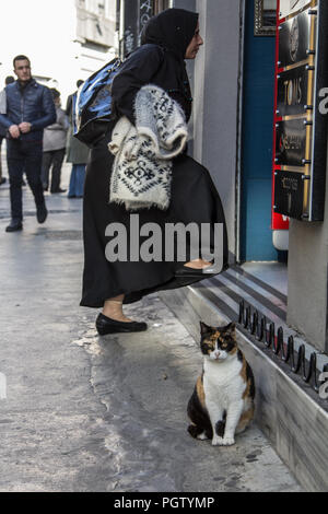 ISTANBUL, TURKEY - DECEMBER 27, 2015: Stray cat standing in front of a shop while a muslim woman wearing the modest clothing with the traditional scar - Stock Photo
