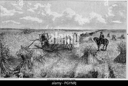 Black and white vintage print, captioned 'Harvesting on a Bonanza Farm, ' depicting a man on horseback watching a long team of workers reap wheat using horse-drawn threshers, located in California, USA, and published in William Makepeace Thayer's volume 'Marvels of the New West', 1887. Courtesy Internet Archive. () - Stock Photo