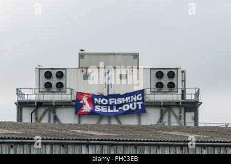 Newlyn, Cornwall, UK. 29th Auigust 2018. A banner has been erected on one of the buildings in Newlyn harbour, which has a large commercial fishing fleet, and where most of the fisherman were in favour of Brexit. Credit: Simon Maycock/Alamy Live News - Stock Photo