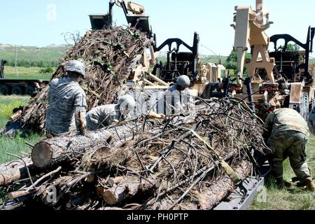 Soldiers from the 137th Transportation Company, Kansas Army National Guard, loosen straps on a load of timber at Red Shirt, S.D., June 15, 2018. The M1057 A1 Palletized Loading System carries the timber from Custer, S.D., to Native American reservations during the annual timber haul operation as part of the Golden Coyote training exercise. - Stock Photo