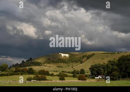 Westbury White Horse. Wiltshire, UK - Stock Photo